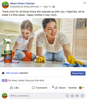 social media marketing management for mean green cleaner